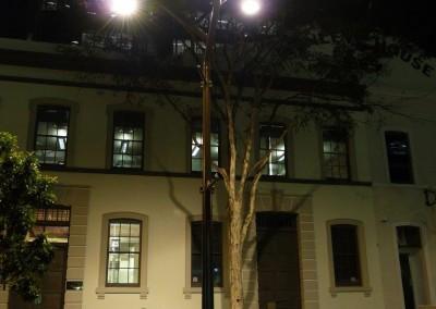 Market St Twig Pole