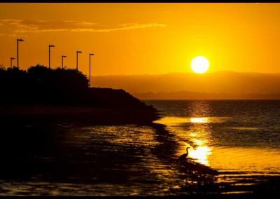 Pathway Sunset, Scarborough boardwalk