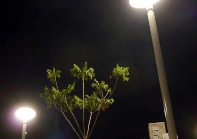 Circular Pipe pole, Portside Brisbane